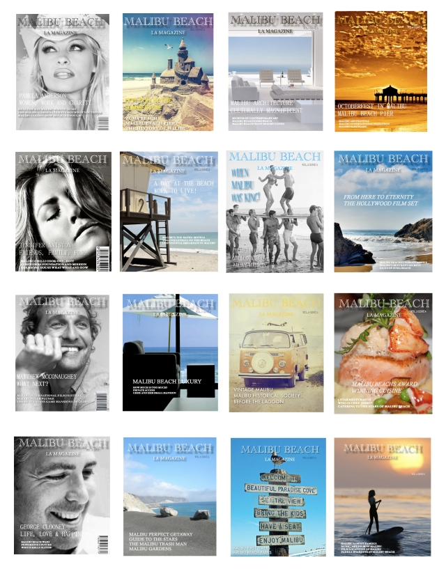 malibu beach magazine past issues